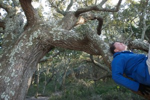 Climbing trees with Ingrid, my Ocracoke buddy.