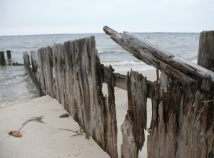 "Out by the ""lost"" colony of Roanoke, near Manteo, N.C."