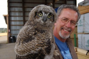 A rescued baby owl in Silver City, New Mexico. The Silver City Daily Press.